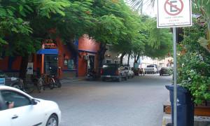 pdc_salguia1