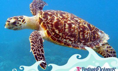 festival de los oceanos