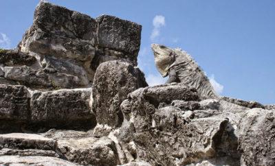 zonas arqueologicas cancun