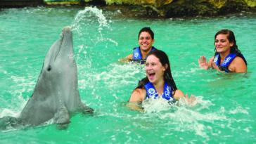 Sonrisas Dolphin Discovery