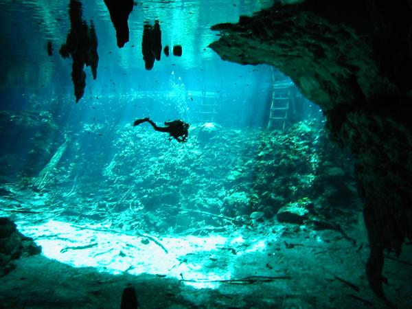 5 cenotes que debes de visitar en la riviera maya � sal